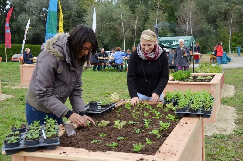 In solchen Hochbehältern wird gemeinschaftliches Gärtnern angeboten.
