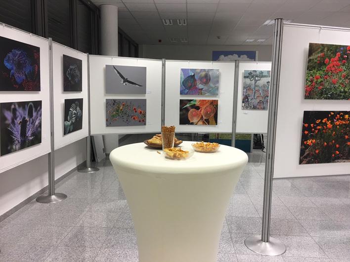 Im Schauraum sind wechselnde Ausstellungen zu verschiedenen Themen zu sehen.