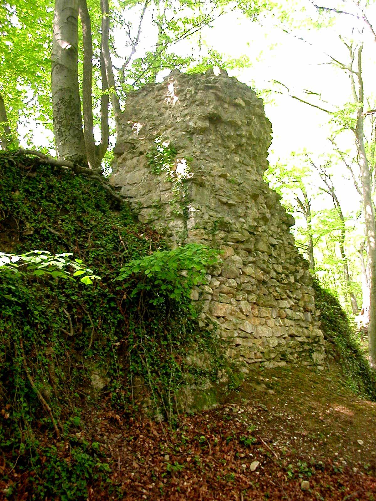 Burg Hertenberg, Blick auf die Südburg