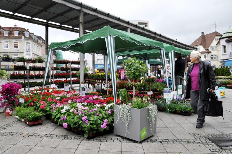 Geranienmarkt auf dem Oberrheinplatz