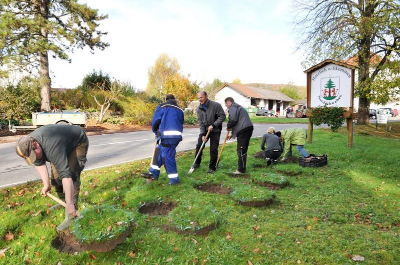 Blumenzwiebelpflanzaktion in Nordschwaben