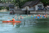 Rund 140 Teilnehmer stürzten sich beim 2. grenzüberschreitenden Rheinschwimmen in die Fluten.