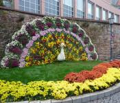 Die Ortsverwaltung Nordschwaben lud alle Senioren ab 65 zu einem Ausflug an die Chrysanthema nach Lahr ein.
