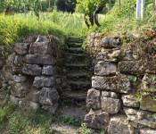 Unter anderem um die Bedeutung von Trockenmauern für den Arten- und Naturschutz geht es bei dem Rebrundgang, zu dem der BUND gemeinsam mit der Stadt und der IG Herten am 9. Juni einlädt. Start ist um 18 Uhr.