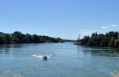 Vom Inseli aus schwimmen die Rheinschwimmer ans badische Ufer.