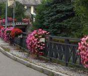 40 Blumen- und Brunnenpaten teilen sich die Pflege des für Degerfelden typischen Blumenschmucks an Brunnen, Brücken und Geländern.