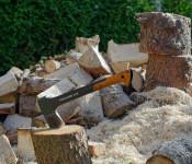 Holz eines gefällten Baumes und eine Axt im Baumstamm