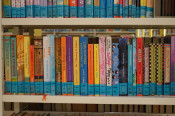 Kinder- und Jugendbücher stehen Rücken an Rücken in einem Regal.