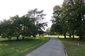 Weg im Herbert-King-Park