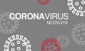 coronavirus_grau_web