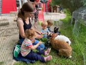 Rebecca Übelin und die Krippenkinder füttern die Kaninchen im Streichelgehege.