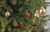 Geschmückte Zweige eines Weihnachtsbaums
