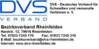 DVS Logo BV