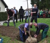 Franz Reichle und Dieter Krause pflanzen den Baum ein.