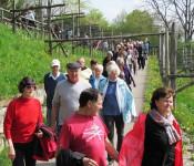 3.000-Schritte-Spaziergang am Adelberg
