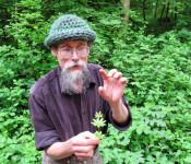 Johannes Riehm erklärte essbare und Heilkräuter.