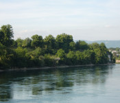 Blick über den Rhein auf den Adelberg