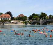Grenzüberschreitendes Rheinschwimmen