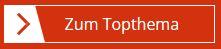 Icon Topthema