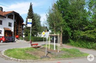Die neue Linde an der Ecke Karsauer Straße / Rütte