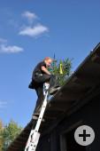 Ein Mitarbeiter des SAK trägt den Richtbaum auf das fertiggestellte Dach.