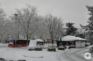Vom Busbahnhof kommen die Rheinfelder auch nachts problemlos in die Ortsteile.