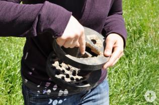 Marisa Molinari zeigt die Spuren einer erfolglosen Marderattacke auf eine alten Niströhre.