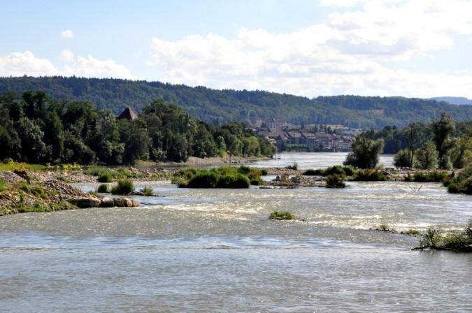 Ausgleichsmaßnahme für den Kraftwerk-Neubau: Fischauftsiegs- und Laichgewässer